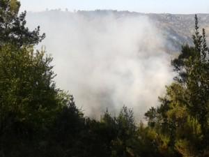Imaxe do incendio durante o día